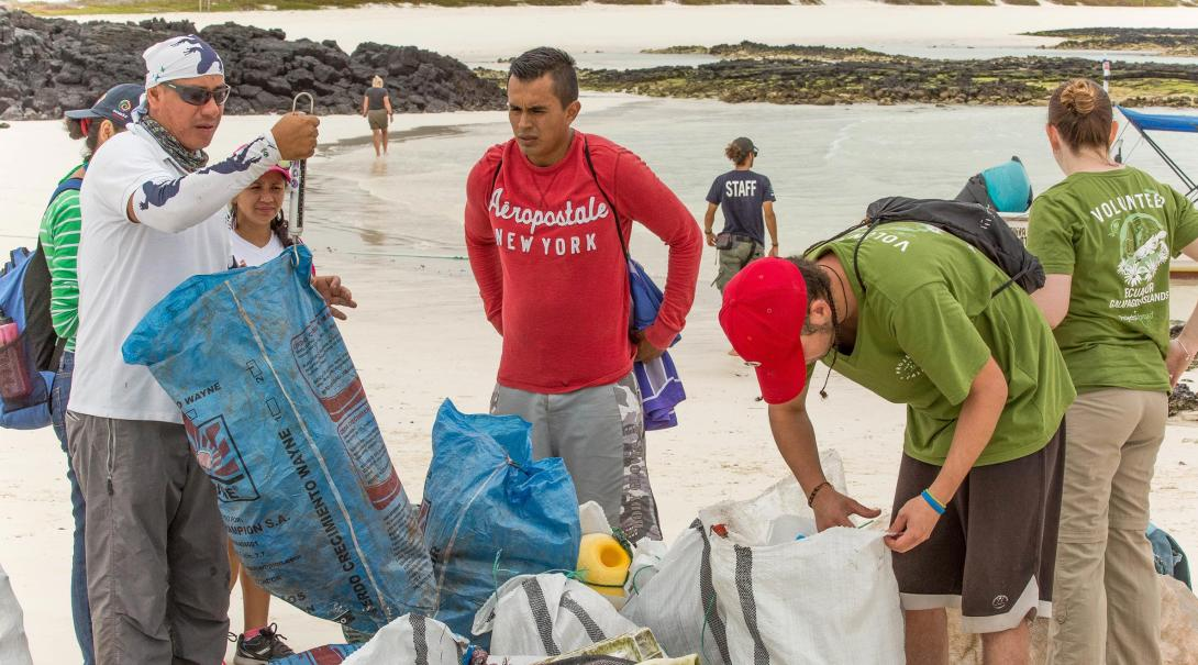 Volunteers clean the beaches as part of the Projects Abroad Conservation efforts in the Galapagos.